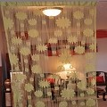 String Curtain Room Divider Partition GREEN